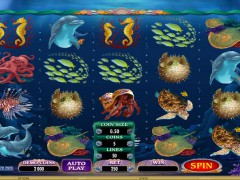 Dolphin Quest - Microgaming