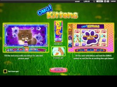 OMG Kittens slotmachines77.com William Hill Interactive 1/5