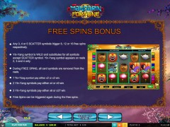Mandarin Fortune slotmachines77.com 2by2 Gaming 4/5